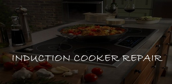induction cooker repair-service