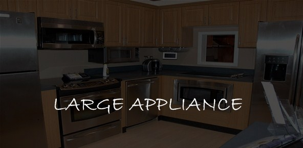 LARGE APPLIANCE
