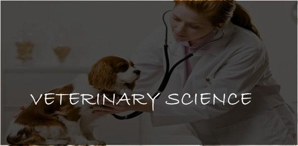 VETERINARY & ANIMAL HUSBANDRY COURSES